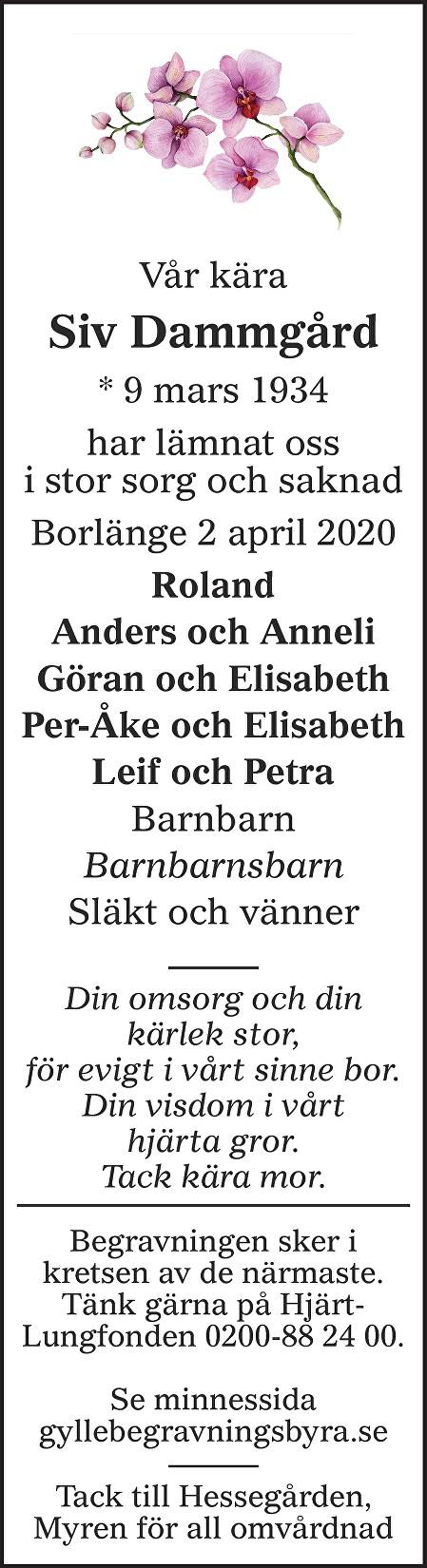 Siv Dammgård Death notice